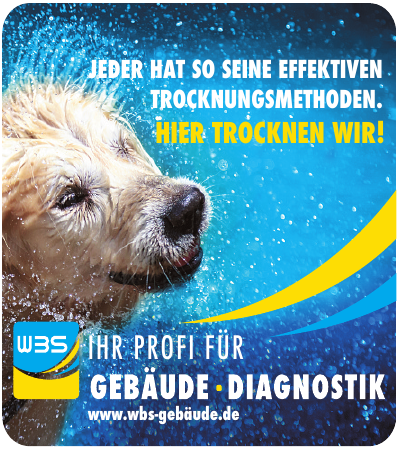 WBS Gebäude - Diagnostik