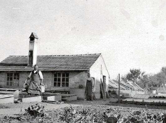 Eines der ältesten Unternehmen in Hirrlingen ist die Gärtnerei Vollmer, die 1912 gegründet und heute bereits in vierter Generation geführt wird. Bild: Vollmer Gärtnerei & Floristik