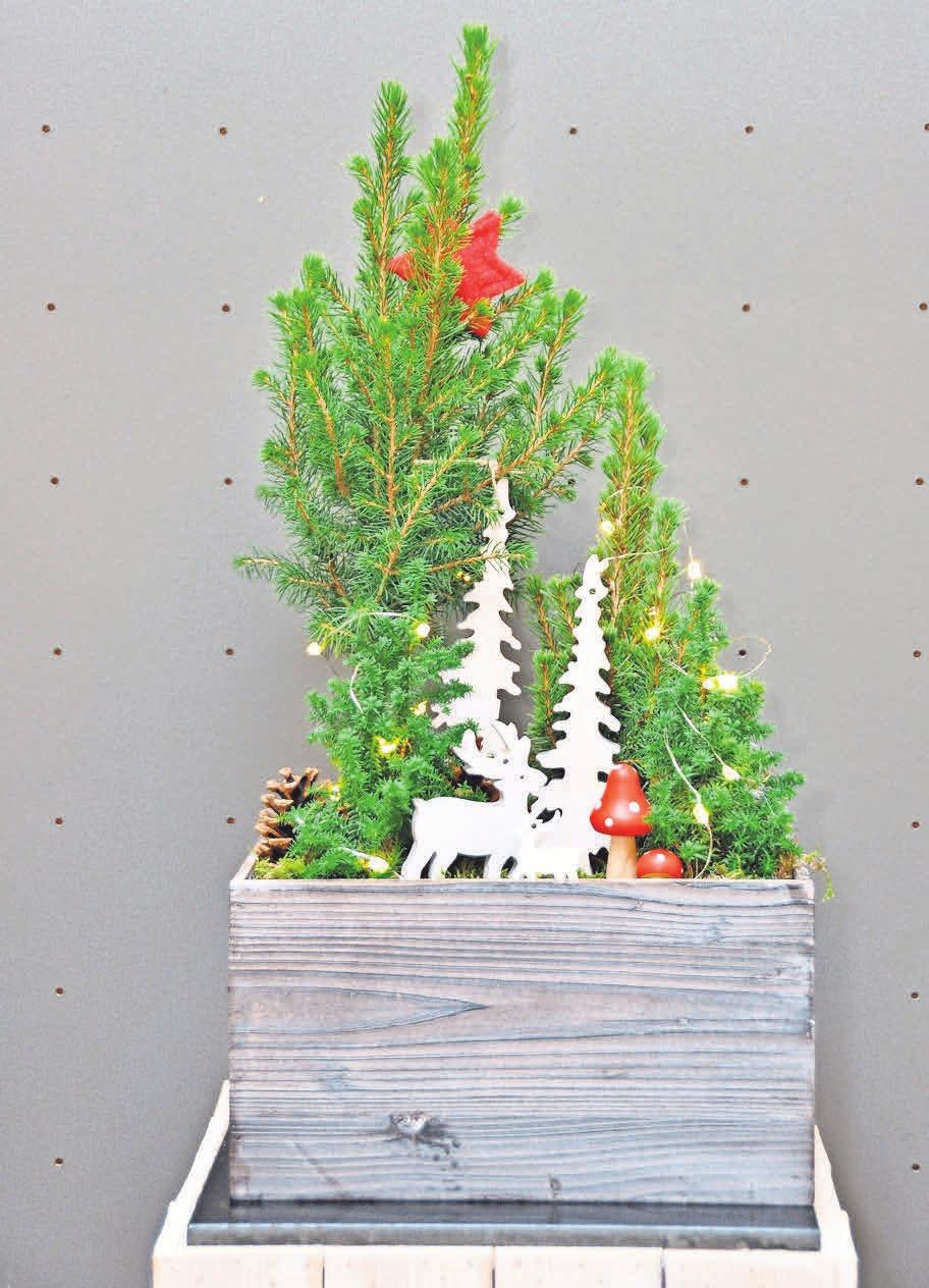 """""""Advent in der Holzkiste"""" ist ein echter Hingucker."""
