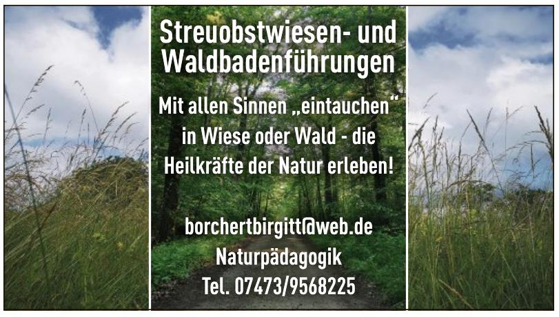 Streuobstwiesen- und Waldbadenführungen