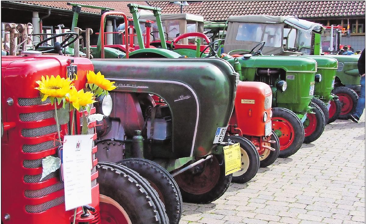 Glänzend geputzte Schätze: Das Oldtimer-Traktorentreffen findet alljährlich am Kerwesonntag statt.FOTO: GEMEINDEVERWALTUNG/FREI