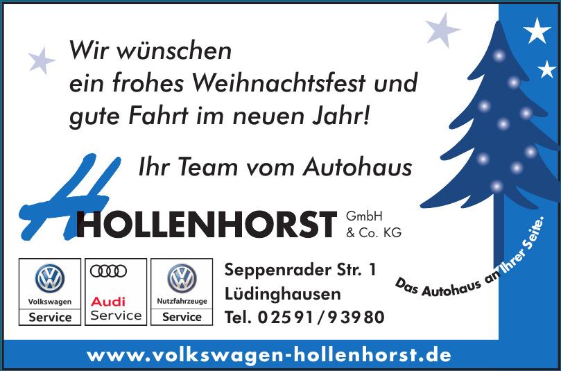 Hollenhorst GmbH & Co. KG