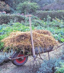 Stroh ist zum Mulchen perfekt geeignet. Foto: Marion Nickig