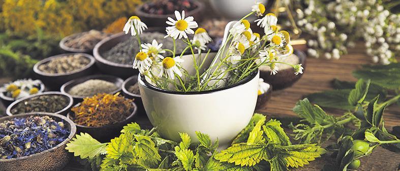 Bild: Sebastian Duda - stock.adobe.com