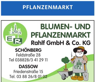 Blumen- und Pflanzenmarkt  Rahlf GmbH & Co. KG