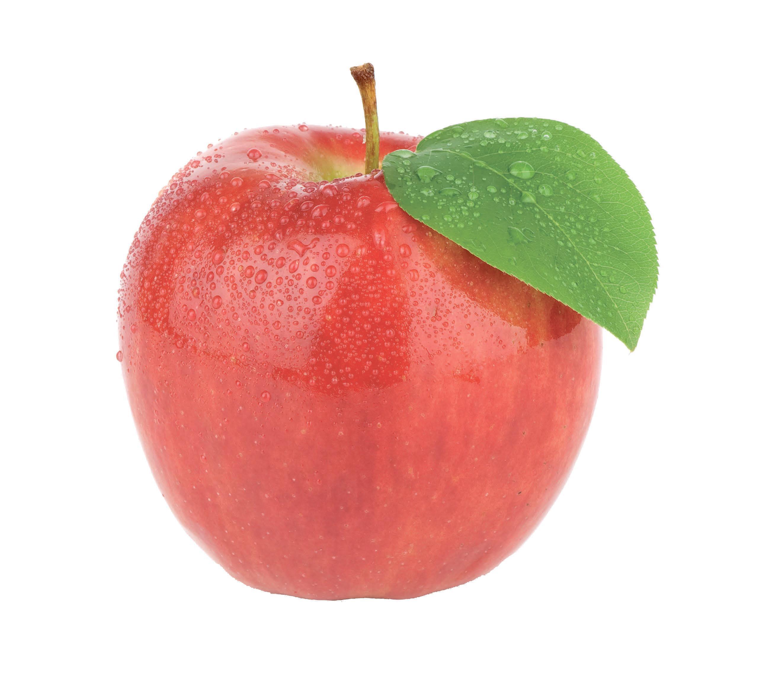 Die Septemberernte verspricht eine große Auswahl an frischem Gemüse und Obst Image 1