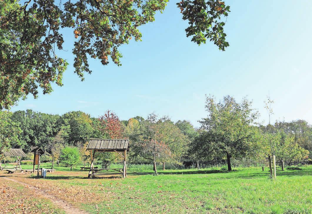 Die Streuobstwiese befindet sich auf der Strecke des Tiergarten-Rundwegs.