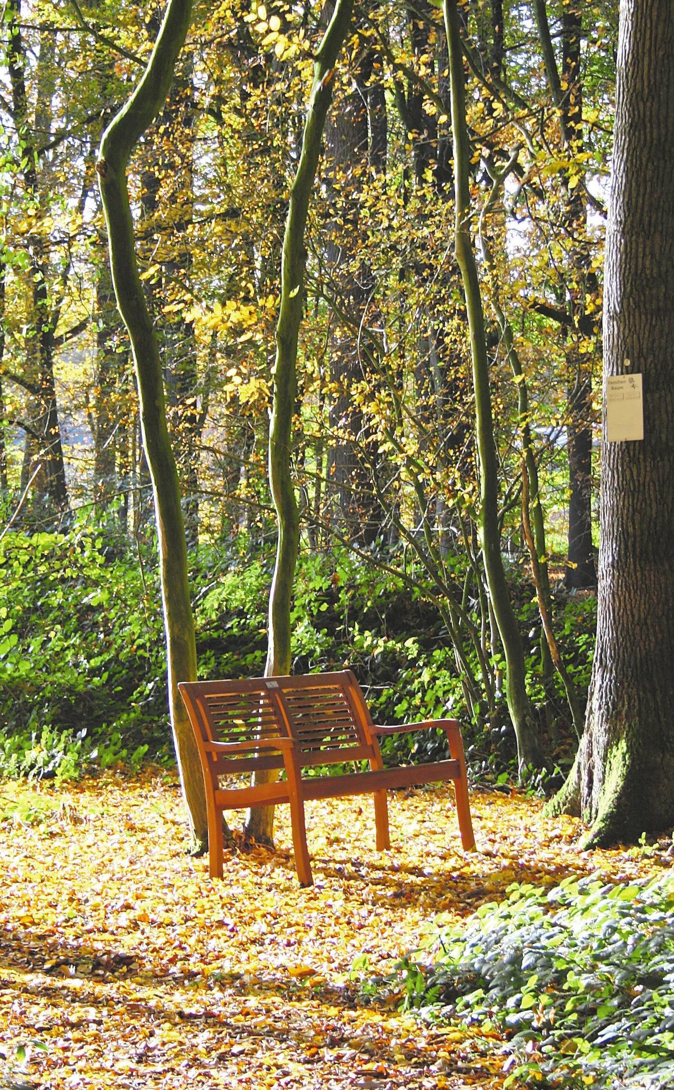 """Jede Jahreszeit hat im """"Waldfrieden"""" einen ganz eigenen Zauber. Foto: Simone Friedrichs"""