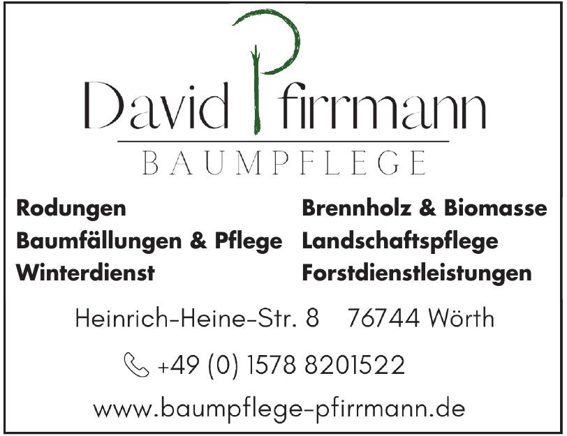 David Pfirrmann
