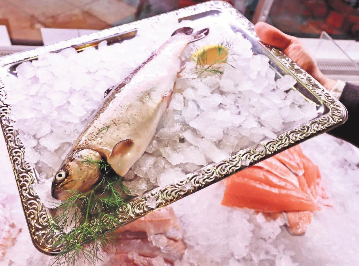 Die Forelle wird jetzt im Frisch-Haus in Kirchrode aufgetischt oder an der Frischetheke mit Rezepttipp für zu Hause angeboten.