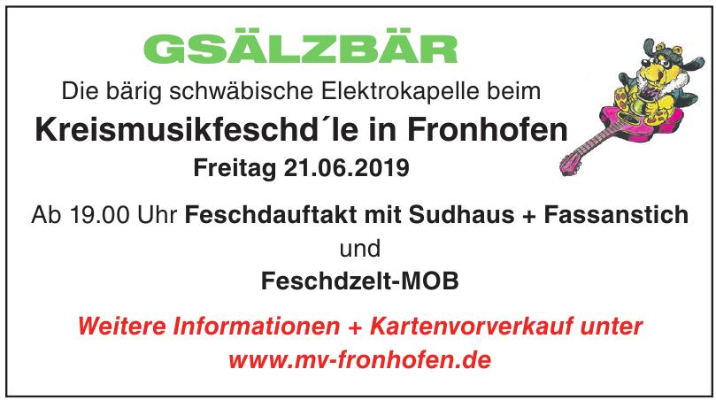 Kreismusikfeschd´le in Fronhofen