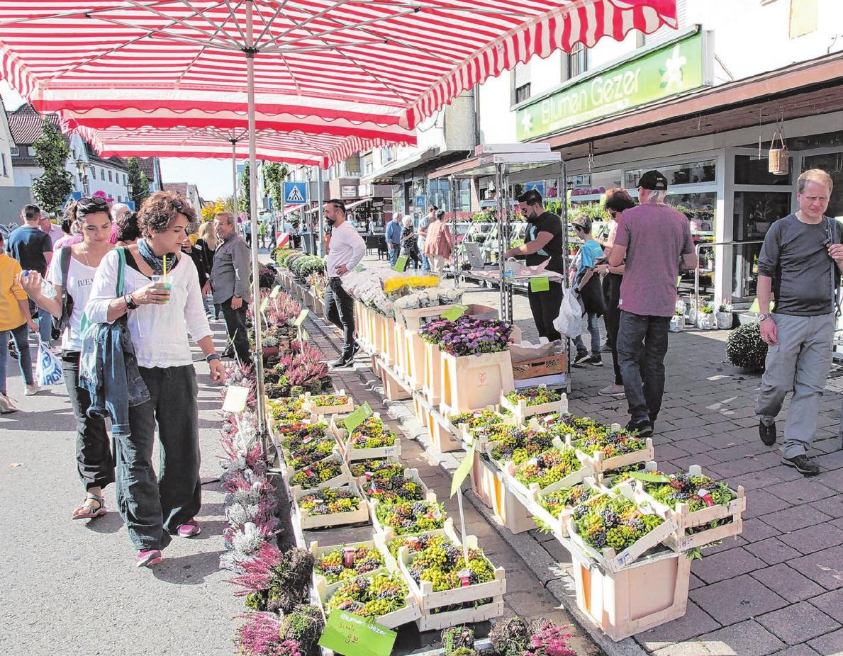 Lange musste man auf ein persönliches Treffen warten. Jetzt geht es endlich wieder los, wie am Sonntag beim Herbstmarkt in Ebersbach.  Fotos: Iris Ruoss
