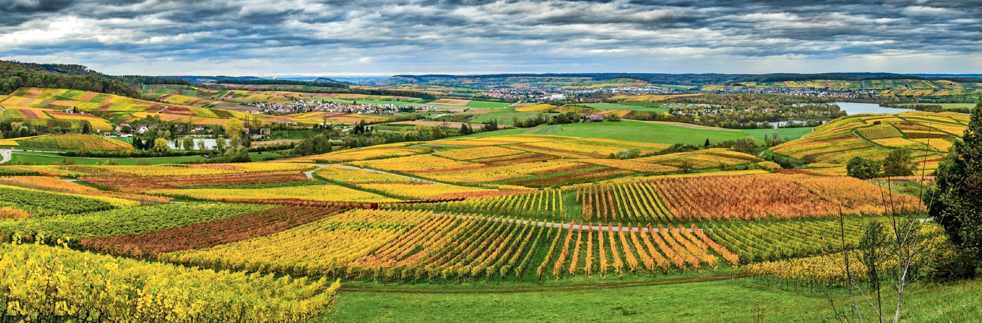 Fotograf Roland Schweizer hat ein Auge für seine Heimat, wie dieser Blick übers Weinsberger Tal und den Breitenauer See zeigt. Foto: Roland Schweizer