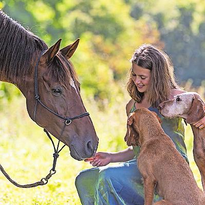 Muss Tiere mögen: Pferdewirtin. FOTO: NADINE HAASE - STOCK.ADOBE.COM