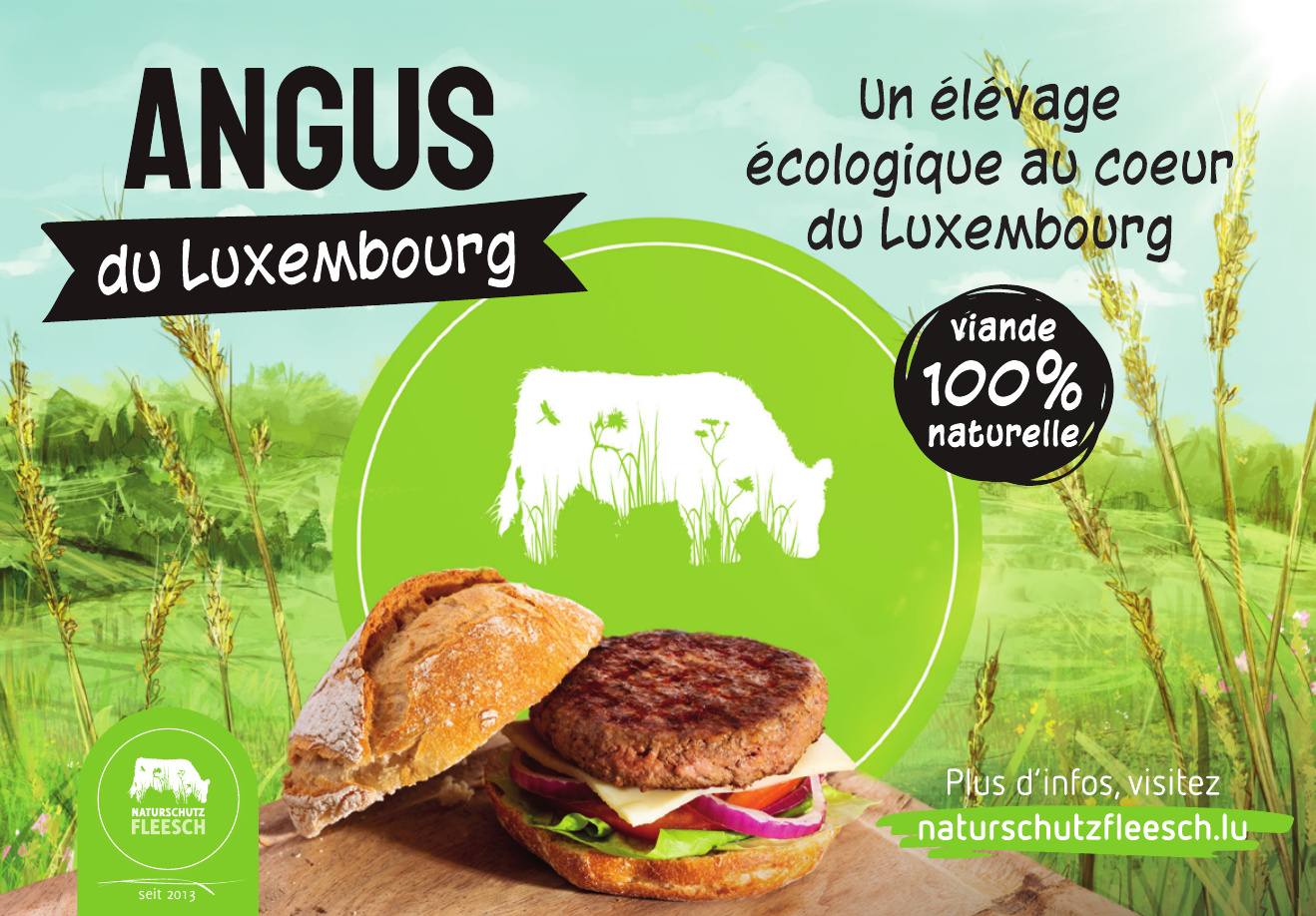 Angus du Luxembourg