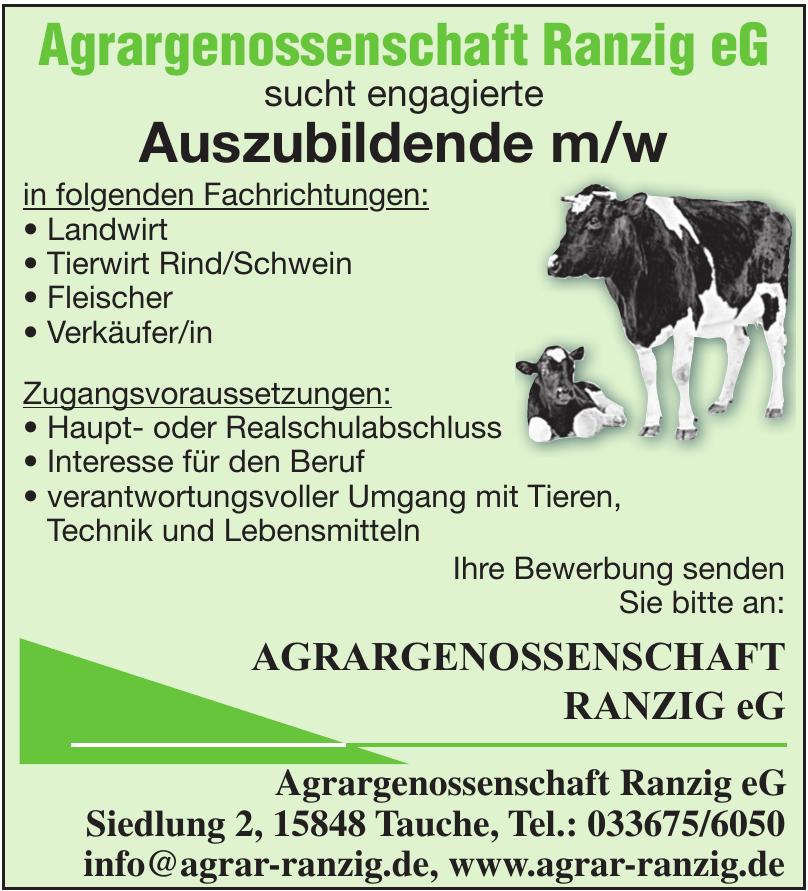 Agrargenossenschaft Ranzig eG