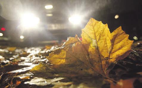 Autofahren im Herbst – Darauf sollten Sie achten Image 6