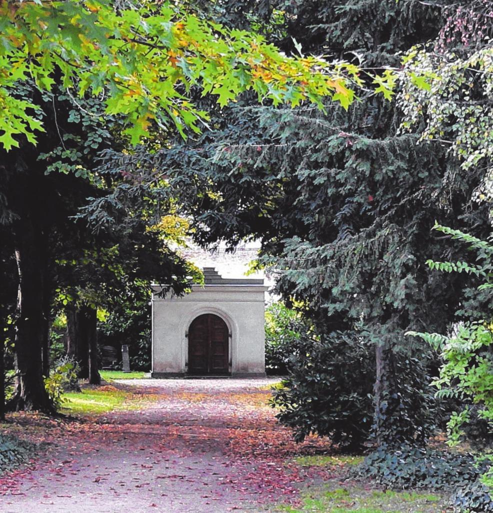 Individuellere und pflegefreie Grabanlagen wünschen sich die Menschen. Die Grabpflege rückt in den Hintergrund. Foto: Archiv
