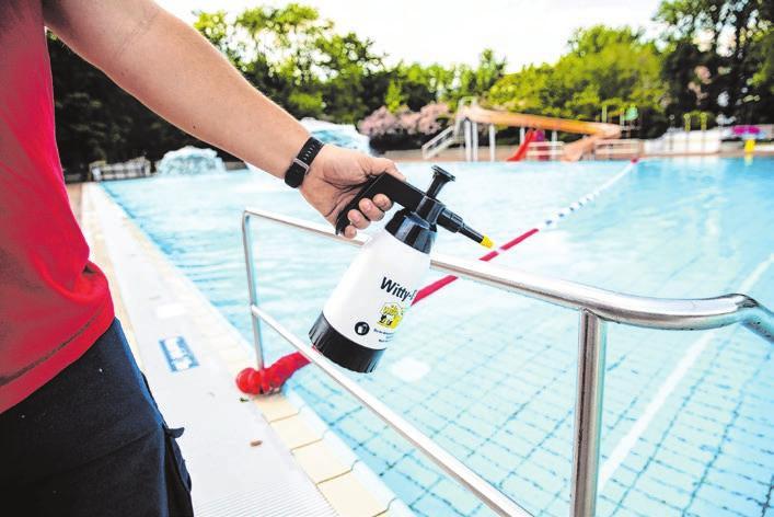 Schwimmen ohne Gegenverkehr Image 2