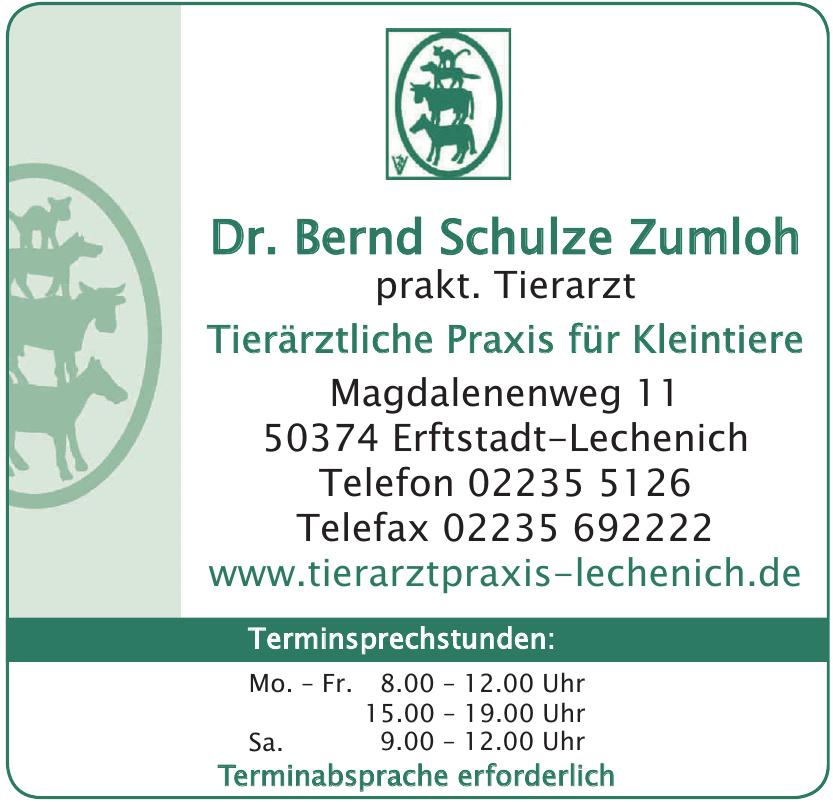 Dr. Bernd Schulze Zumloh, prakt. Tierarzt, Tierärztliche Praxis für Kleintiere
