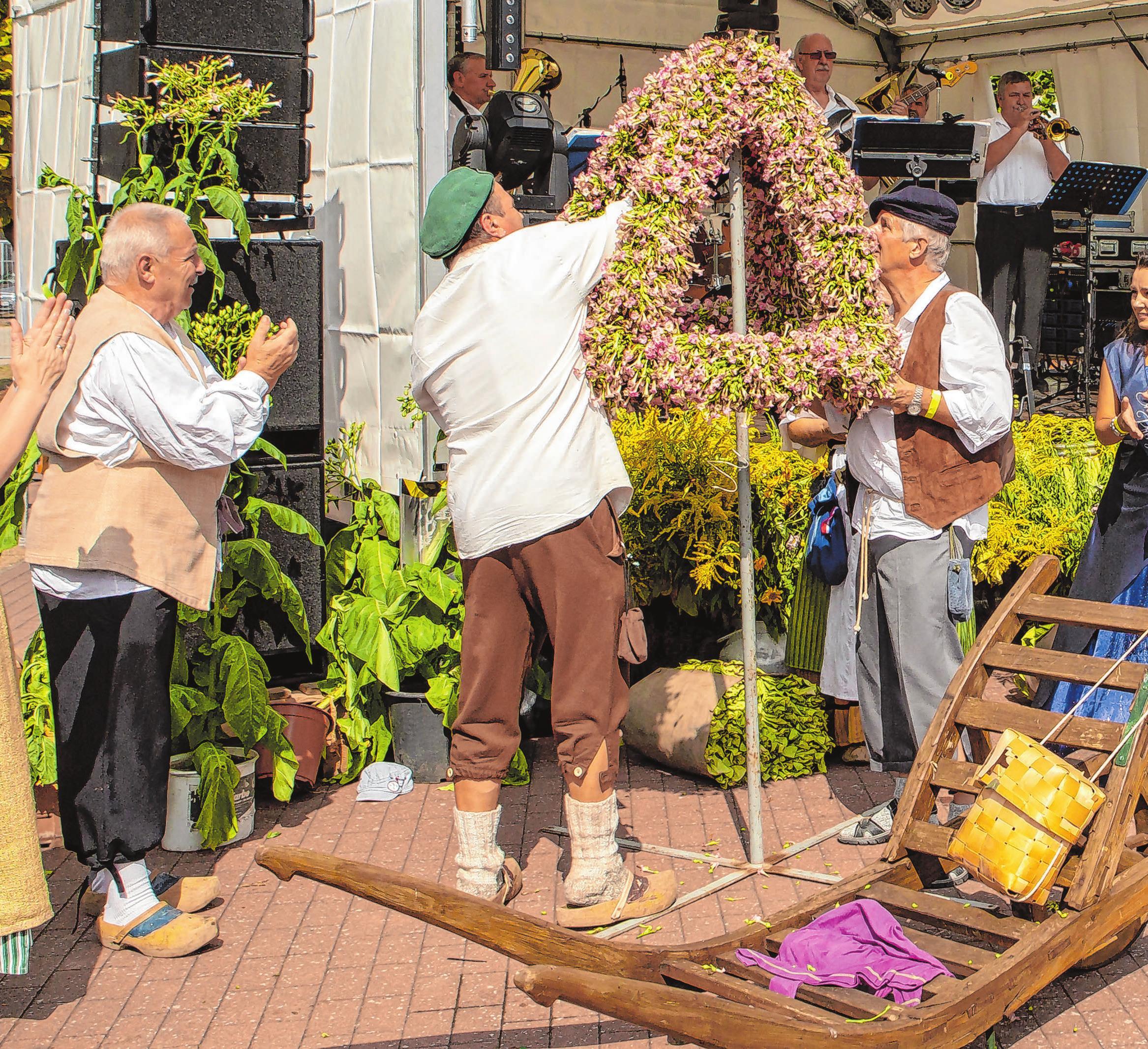 Filigranes Kunstwerk: Die Krone aus Tabakblüten, die zum Start vorsichtig aufgestellt wird, verdient auch in diesem Jahr viel Bewunderung.