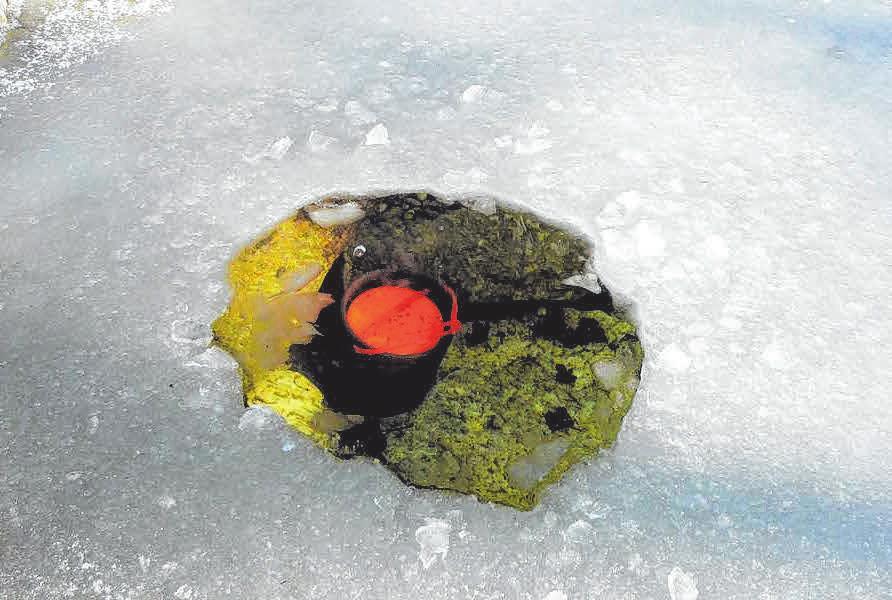 Ausreichend Sauerstoff ist besonders unter der Eisdecke im Gartenteich für das Wohlergehen der Unterwasserbewohner wichtig. FOTOS: DJD/SÖCHTING BIOTECHNIK