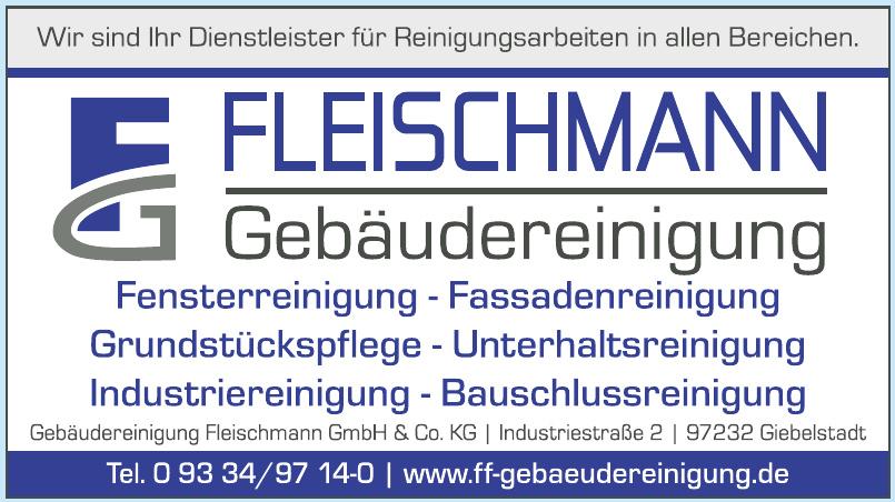 Gebäudereinigung Fleischmann GmbH & Co. KG