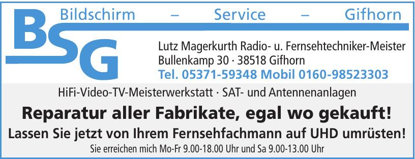 BSG Bildschirm - Service - Gifhorn