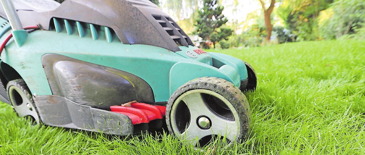 Gartenarbeiten wie Rasenmähen gehören nicht zu den Aufgaben eines Au-pairs – es sei denn, sie haben Lust darauf. FOTO: NESTOR BACHMANN/DPA