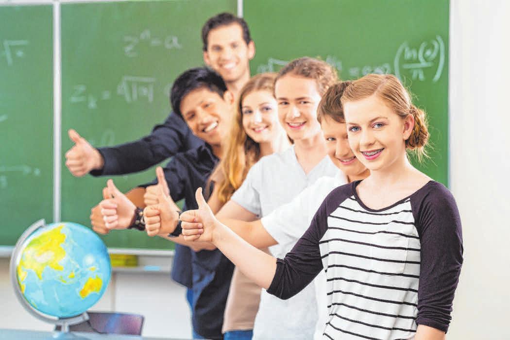 Innerhalb jeder Schulart gibt es wiederum eine Vielzahl inhaltlich und von ihrer Dauer unterschiedlicher Bildungsgänge.