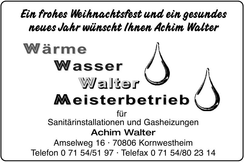 Achim Walter