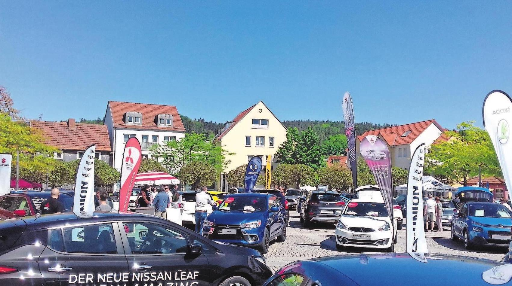 Besucher der Autoschau können sich von den Fachhändlern beraten lassen. Fotos: HGV