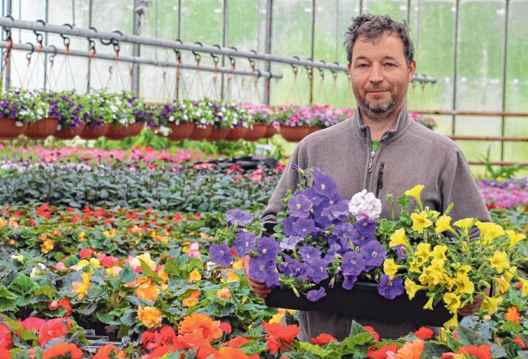 Nach den Eisheiligen ist draußen die optimale Pflanzzeit. In der Gärtnerei Masetti gibt es Garten- und Balkonpflanzen in Hülle und Fülle. Foto: Schmidl