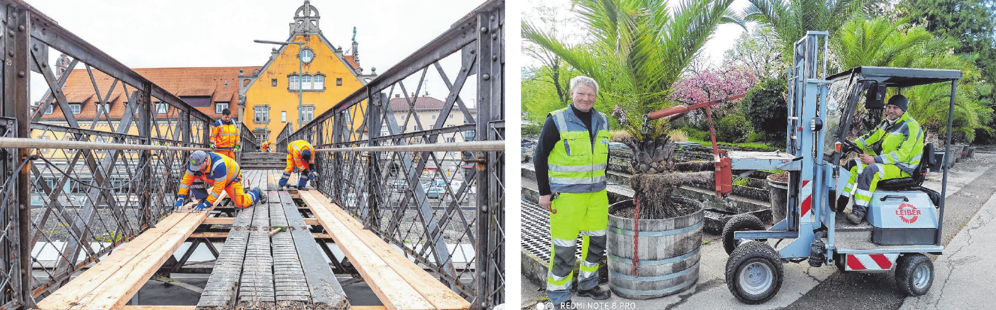 Die GTL kümmern sich im Wesentlichen um die Planung, den Bau und Unterhalt sowie um den Betrieb und die Pflege der öffentlichen Grünflächen- und Tiefbauinfrastruktur der Stadt Lindau. Zu sehen sind hier GTL-Miatarbeiter, die den Ho-Chi-Minh-Pfad über den Schienen auf der Lindauer Insel sanieren (li.) und den Stadtpark mit Palmen bepflanzen. FOTO: STADTGÄRTNEREI LINDAU