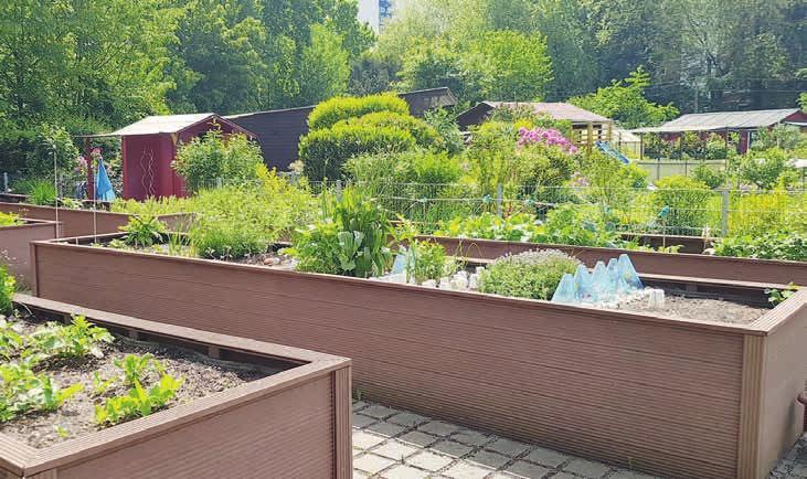 Im Kleingartenverein Döhrnkamp können auch einzelne Hochbeete gepachtet werden