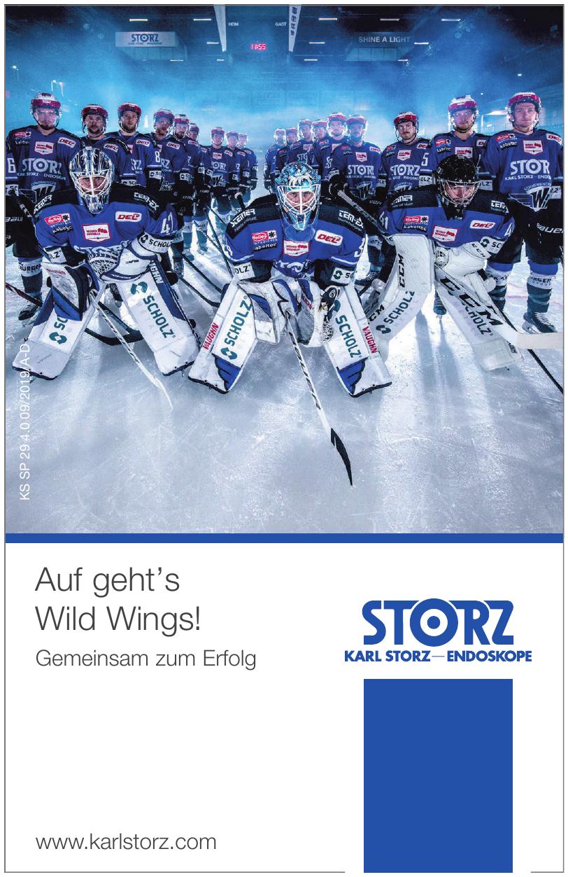 Karl Storz SE & Co. KG