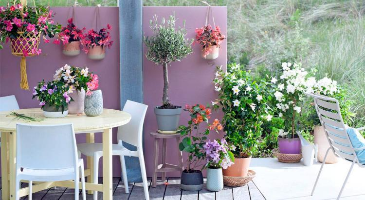 Moderne Möbel, Farben und Blumen machen den Sitzplatz im Freien zum Sommerwohnzimmer für die ganze Familie.