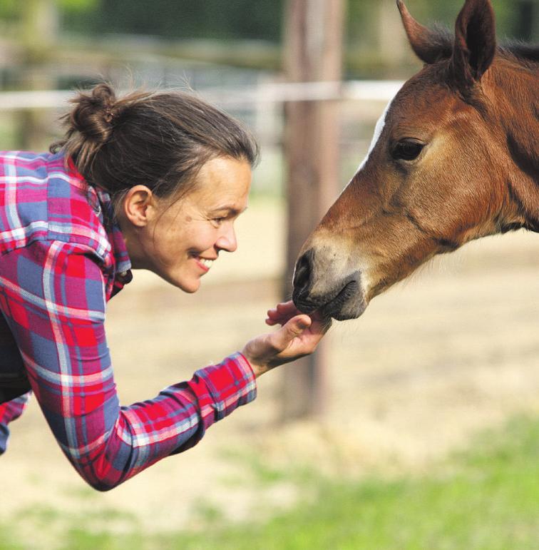 Sie freuen sich über den Nachwuchs auf ihren Weiden: Claudia Knickrehm mit dem neuen Stutfohlen...