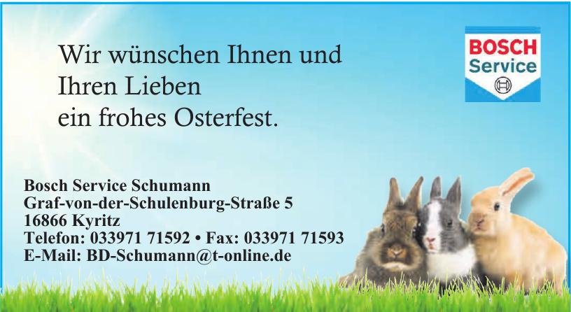 Bosch Service Schumann