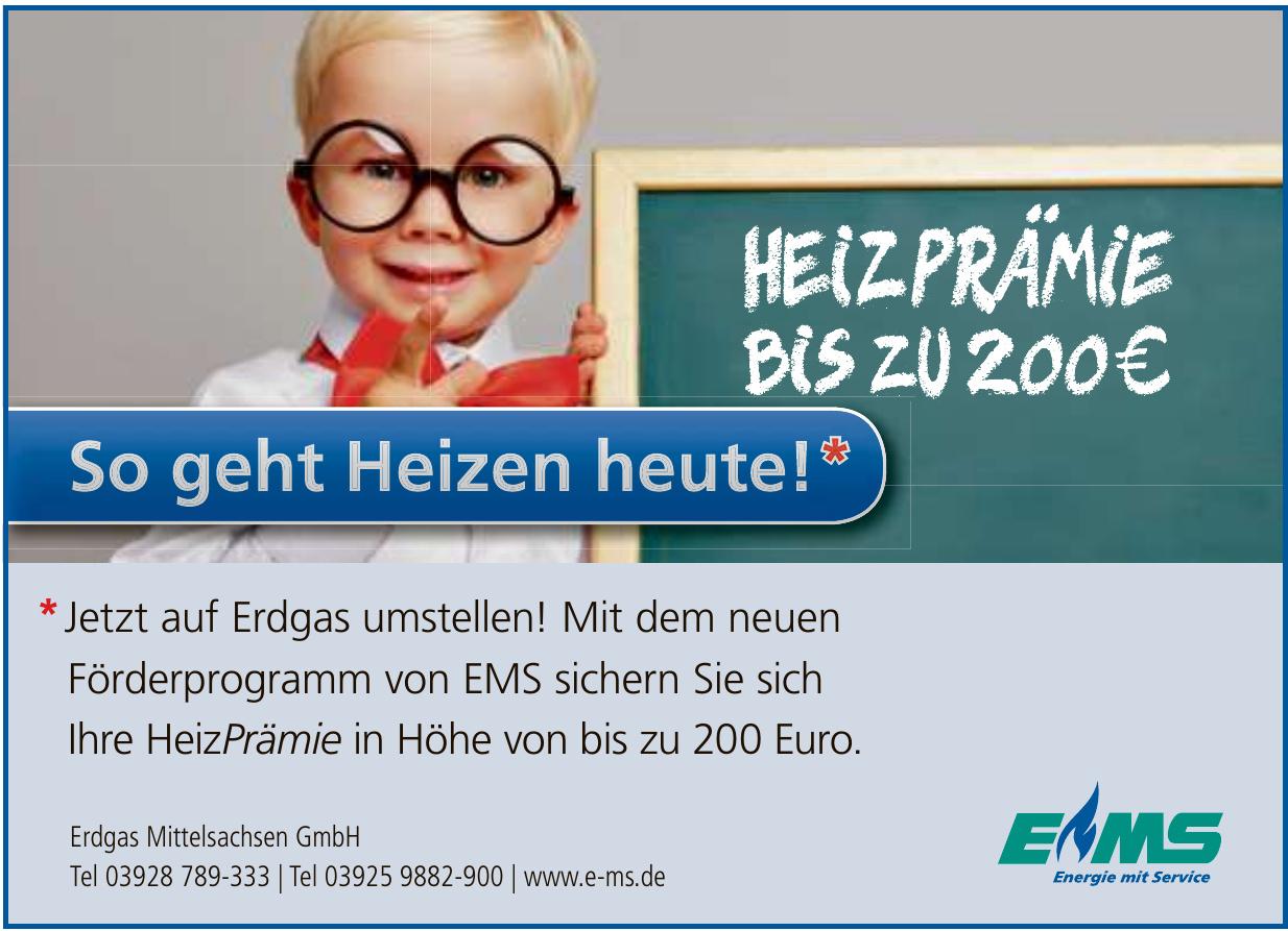 Erdgas Mittelsachsen GmbH