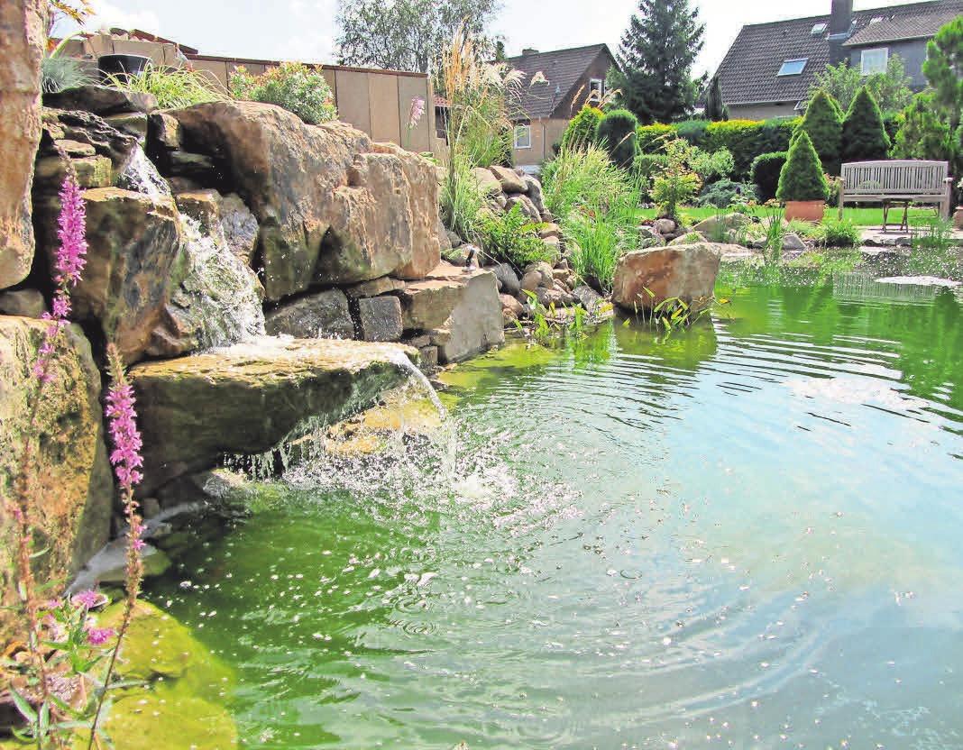 Wer im Sommer einen Gartenteich haben möchte, sollte jetzt mit der Planung beginnen.