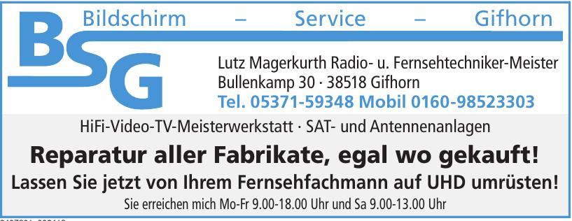 BSG Bildschirm-Service-Gifhorn
