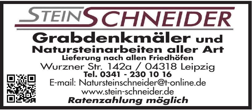 Stein Schneider