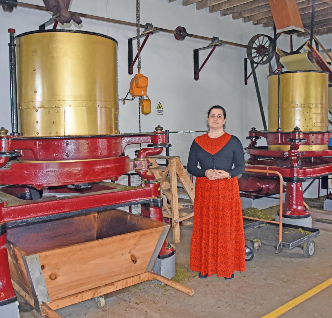 """Madalena Motta leitet in fünfter Generation die Teeplantage """"Chá de Gorreana"""". BILD: UTE MÜLLER/DPA-TMN"""