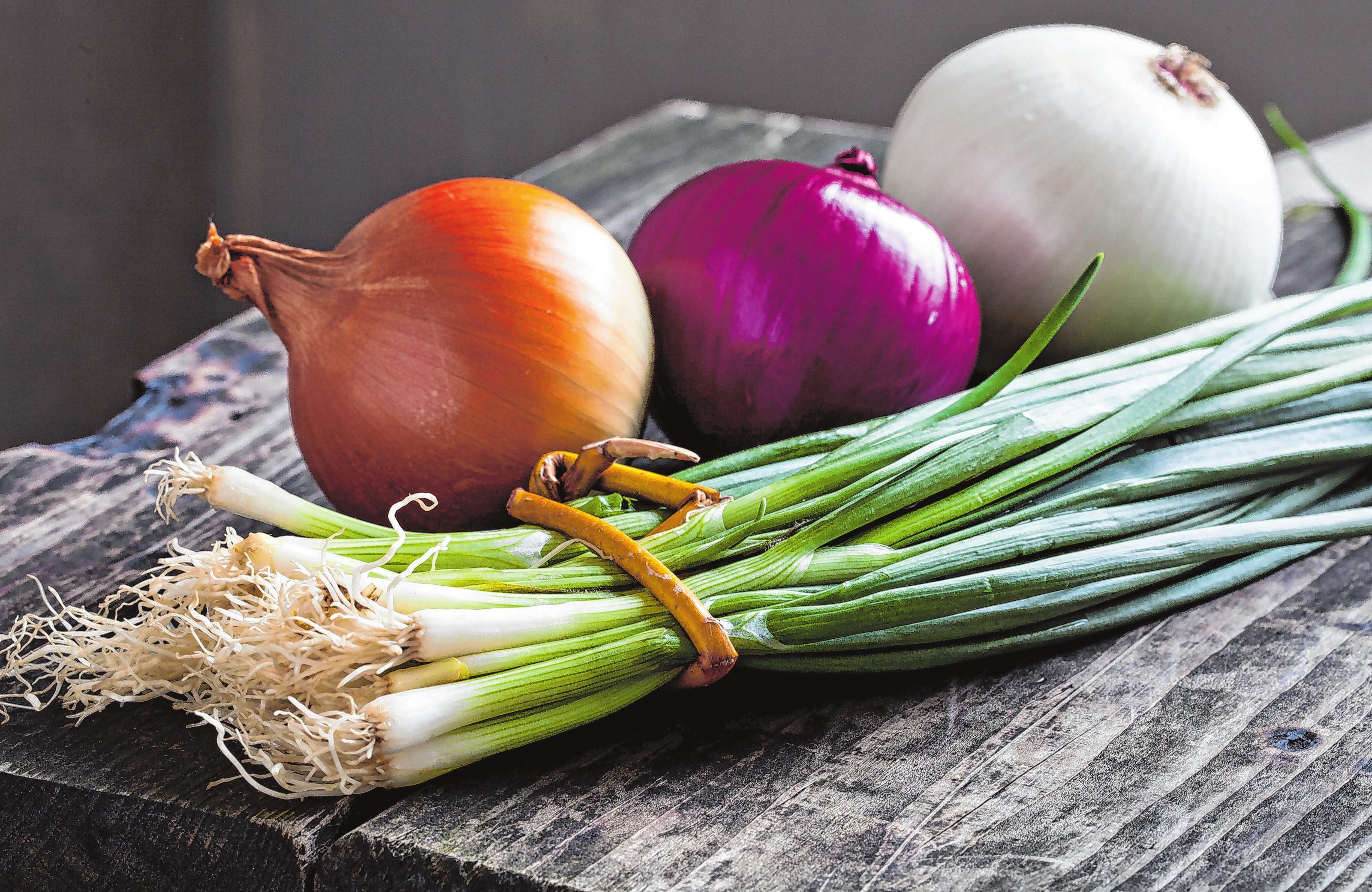 Frische Lauchzwiebeln sind lecker in Quark oder einfach auf Brot.. Foto: shutterstock