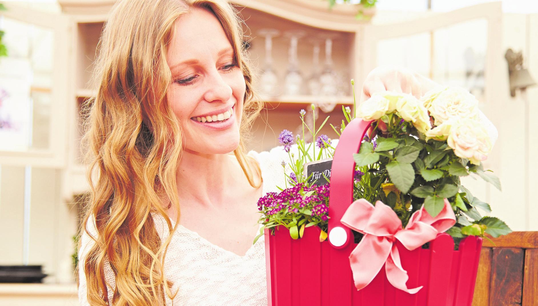 """Schöner Ersatz für eine Umarmung: Pflanzen und Blumen zum Muttertag bringen Freude ins Haus. Da darf der Begriff """"Mutter"""" diesmal ruhig etwas weiter gefasst werden. Foto: GMH/BVE"""