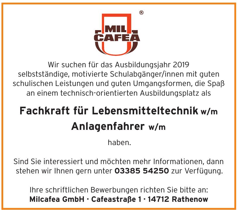 Milcafea GmbH