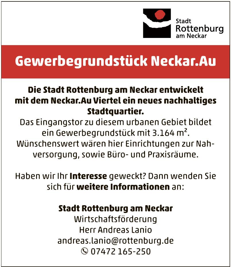 Stadt Rottenburg am Neckar