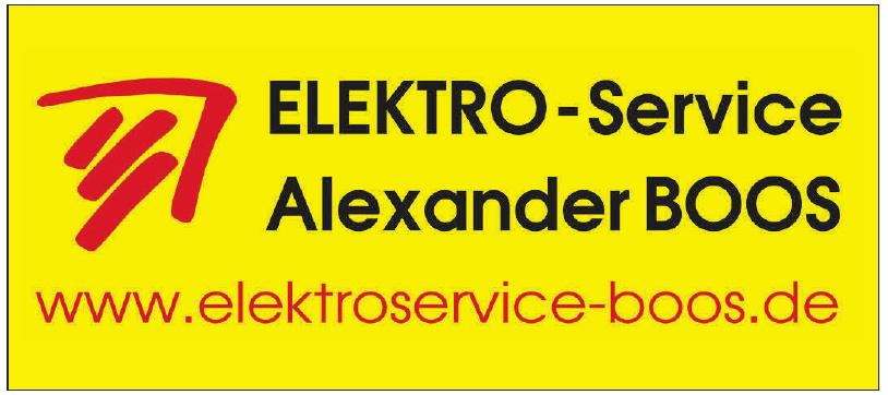 Elektro-Service Alexander Boos