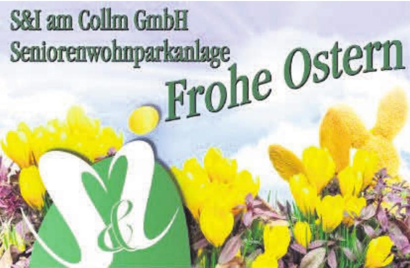 S&I am Collm GmbH